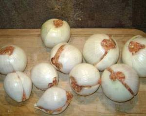 onion balls